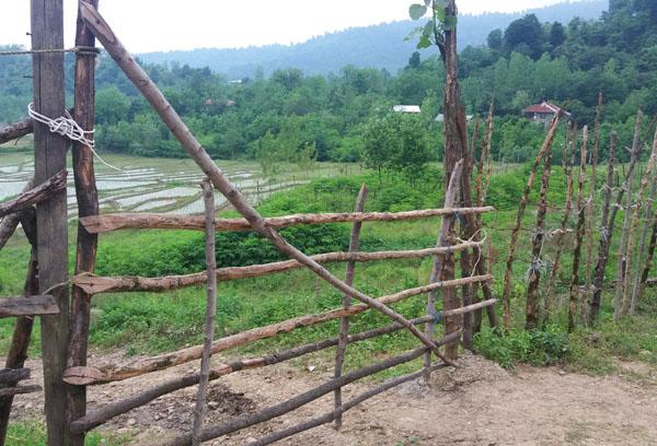 محرمان روستایی زیبا در دل طبیعت+تصاویر