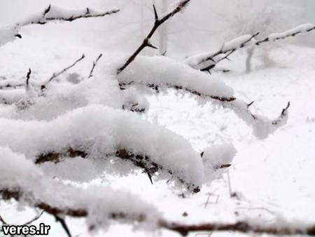 برف جاده های منتهی به روستای مژدهه شفت را مسدود کرد