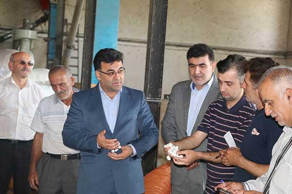 بازدید فرماندار شهرستان شفت از مراکز خرید توافقی پیله کرم ابریشم